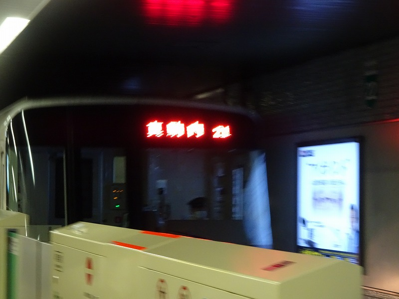 DSC09488.jpg