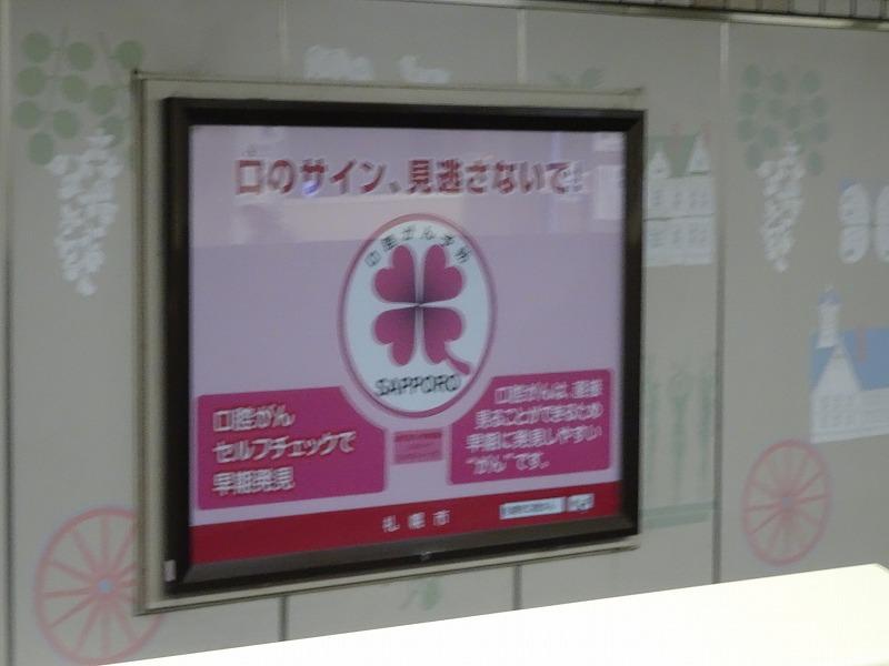 DSC09491.jpg