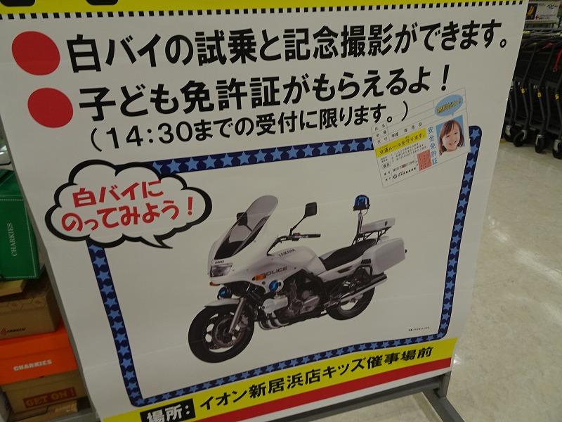 DSC07179.jpg