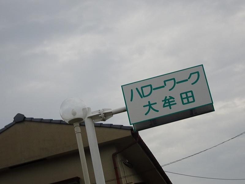 DSC03738.jpg