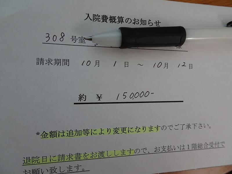 DSC03931.jpg
