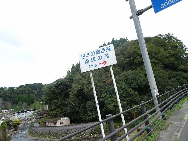 DSC04334.jpg