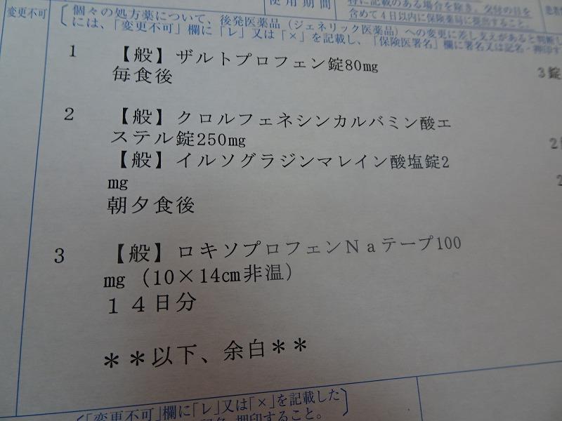 DSC04619.jpg