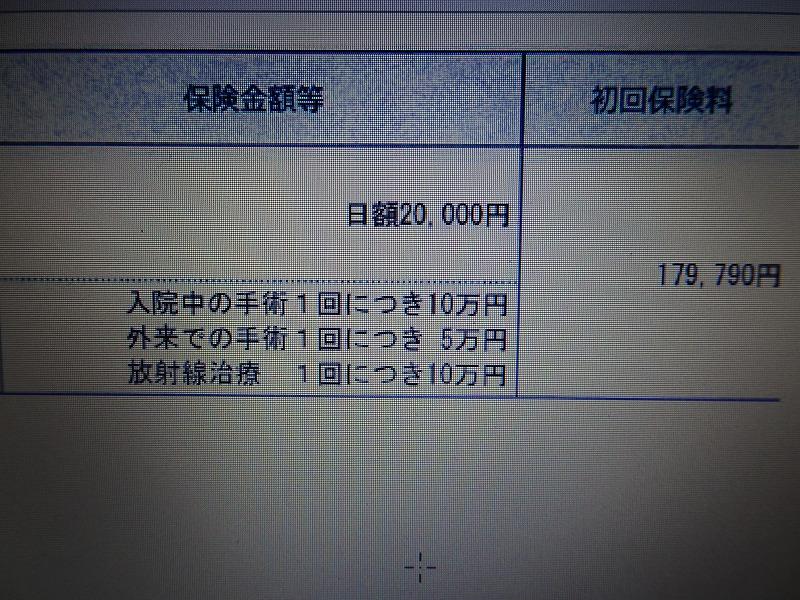 DSC06199.jpg