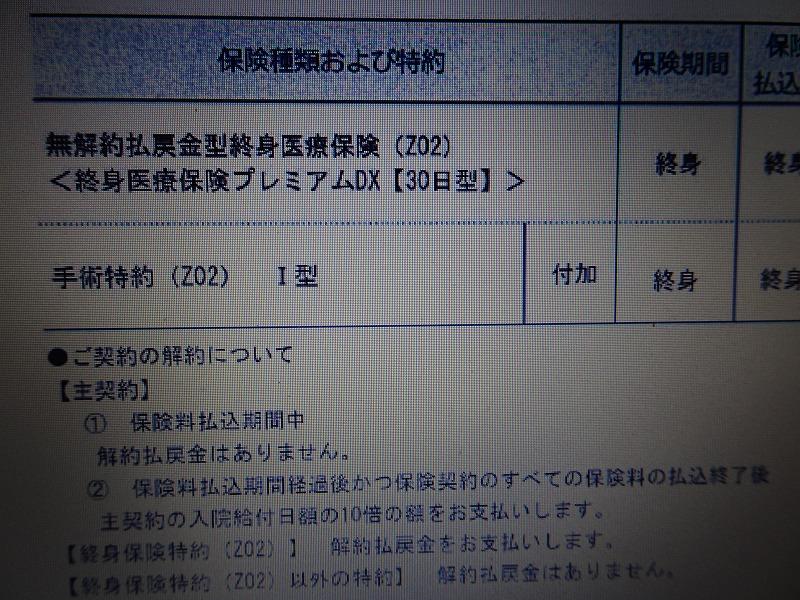 DSC06214.jpg