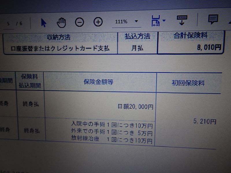 DSC06221.jpg