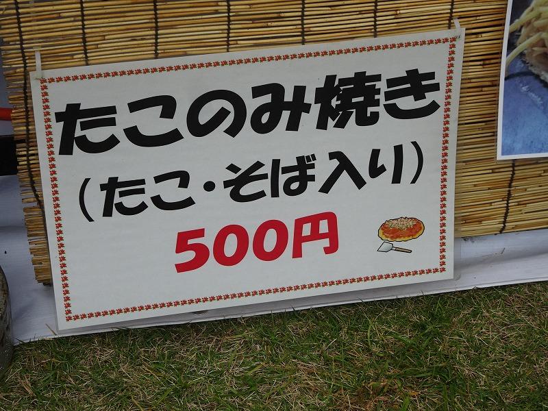 DSC09480.jpg