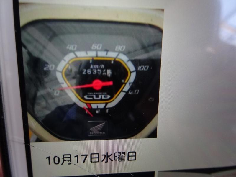 DSC00339.jpg