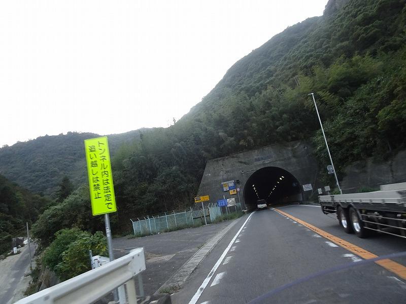 DSC01048.jpg