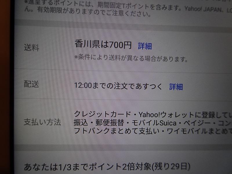 DSC08666.jpg