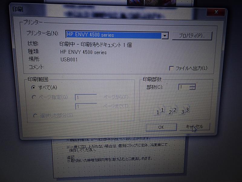 DSC08754.jpg