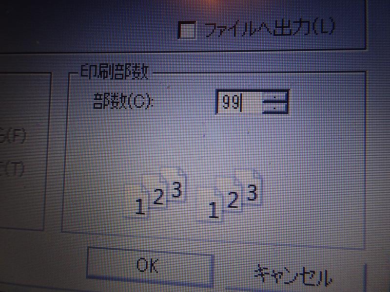 DSC08759.jpg