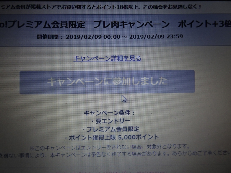 DSC02231.jpg
