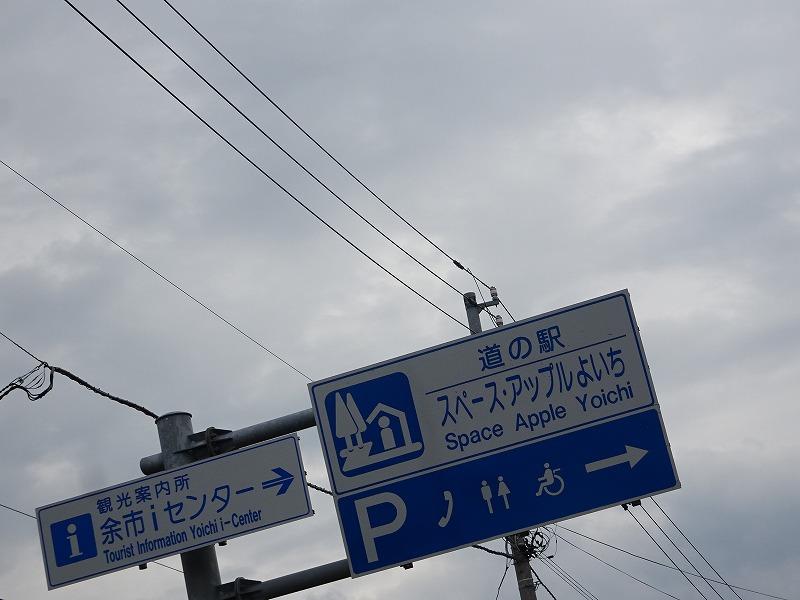 DSC05549.jpg