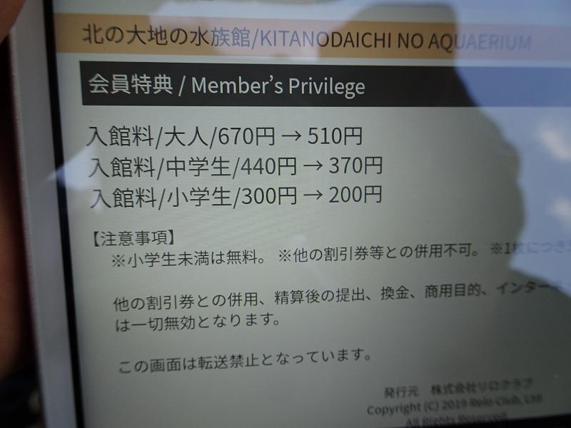 DSC07611.jpg