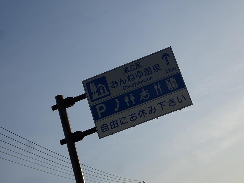 DSC07776.jpg