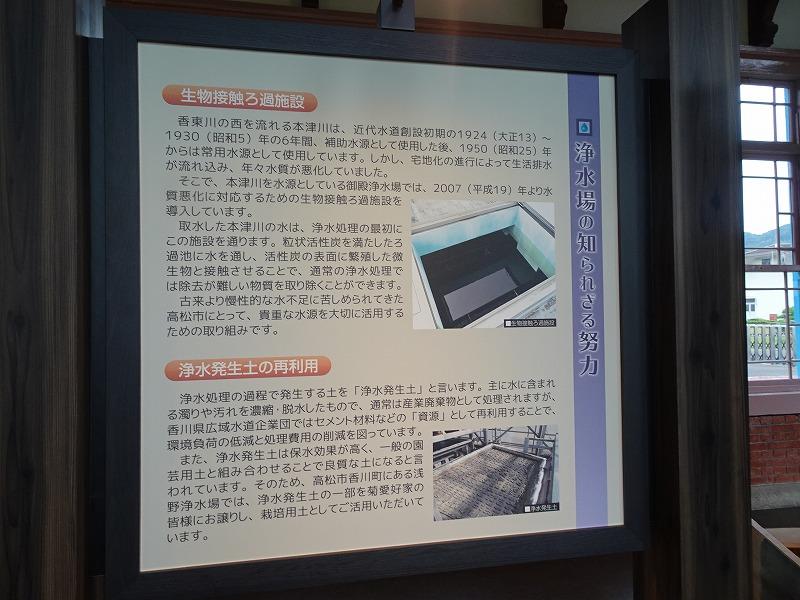 DSC03730.jpg