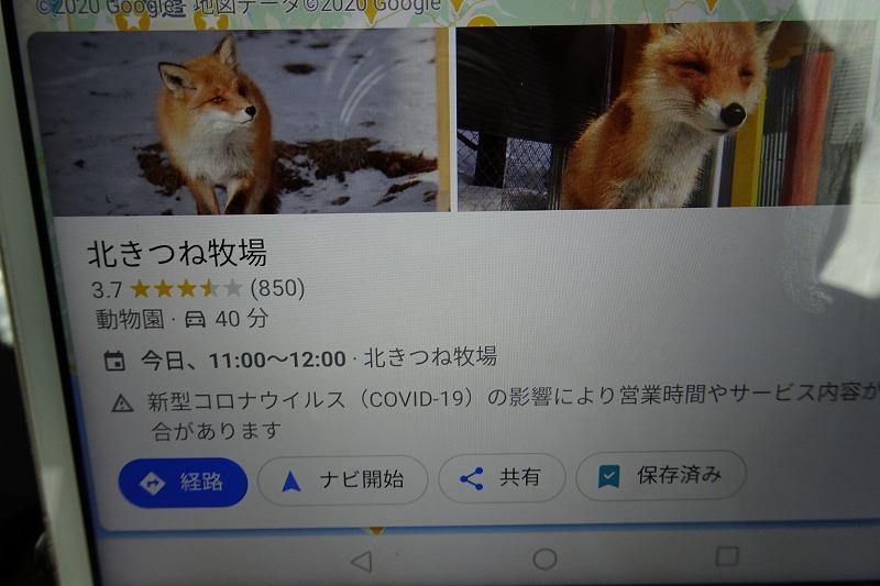 DSC08270.jpg
