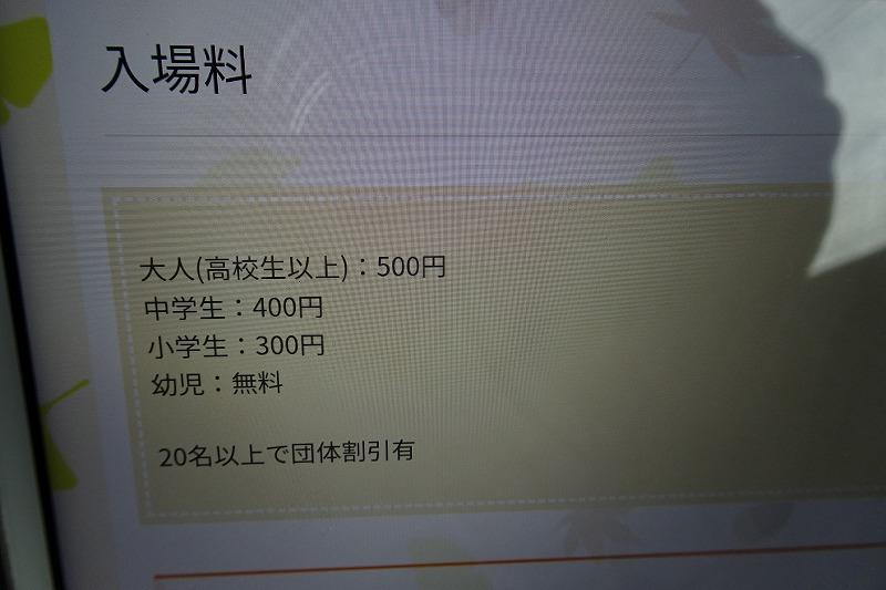 DSC08274.jpg