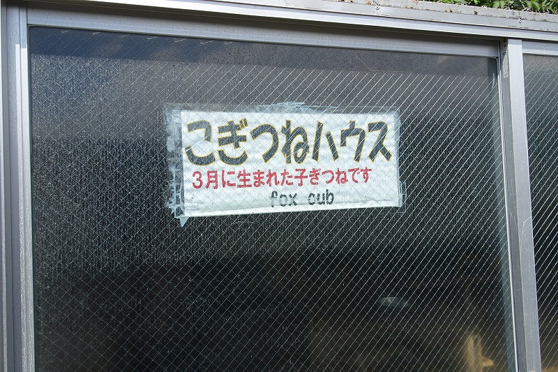 DSC08328.jpg