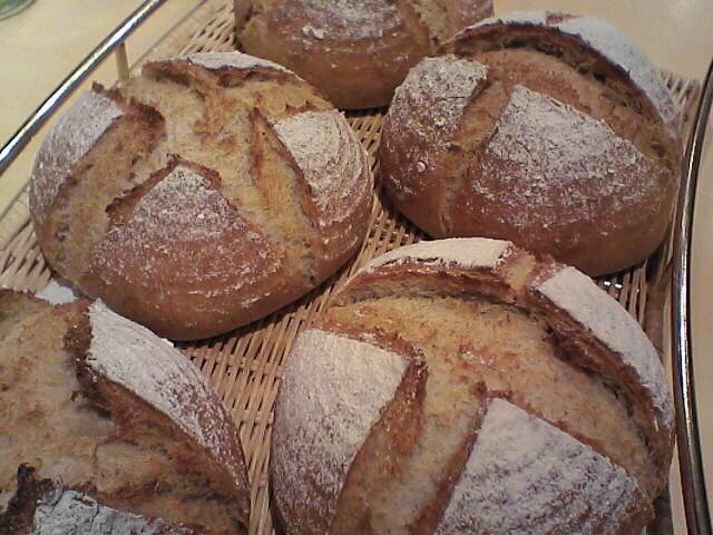 プレーンロールパン