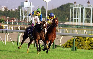 1997年天皇賞・秋(エアグルーヴ)