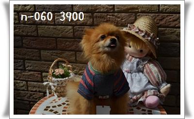 手作り犬服