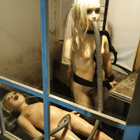 裸の少女人形画像