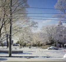 雪がきらきら