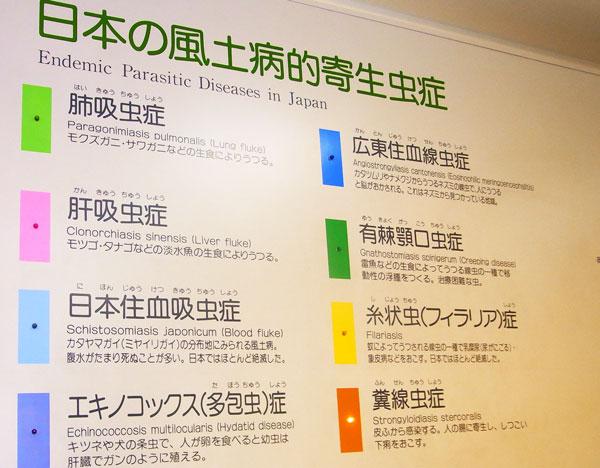 日本の風土病的寄生虫症