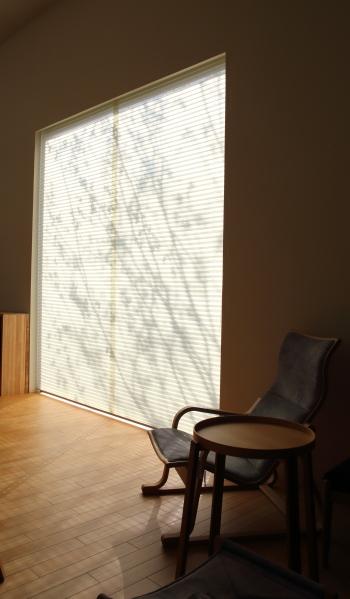 大きな窓に映る影