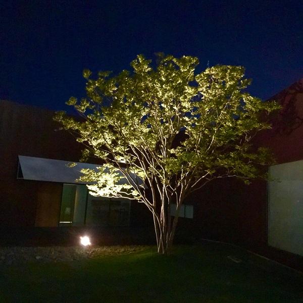 庭をライトアップ