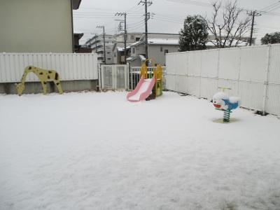 1902雪 (2).JPG