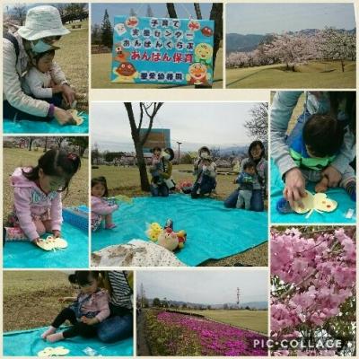 Collage 2017-04-10 11_51_48.jpg