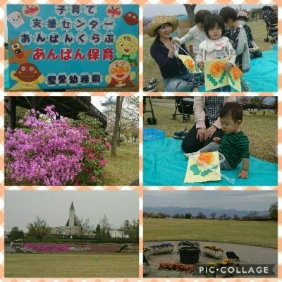 Collage 2017-04-17 13_11_29.jpg