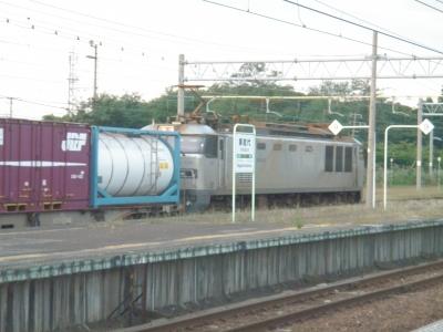 P9050015.JPG