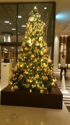 tree01 (1).JPG