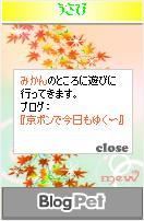 うさびとみかん111201