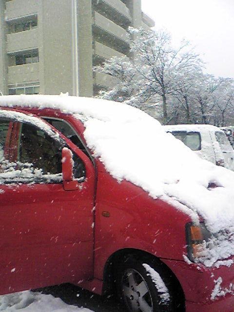 車に積る雪