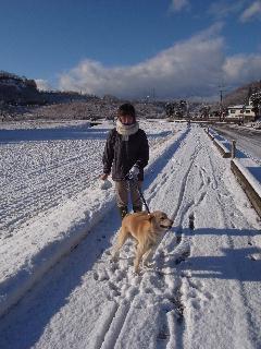 雪中散歩.jpg