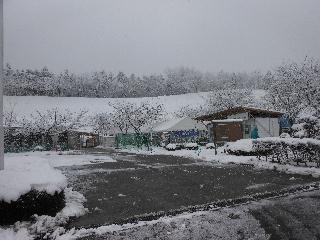 雪のセンター.jpg