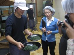 和田長茶師・小泉さんの、ふるいによる仕分けの説明