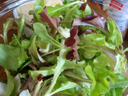 フレッシュなつまみ菜サラダ