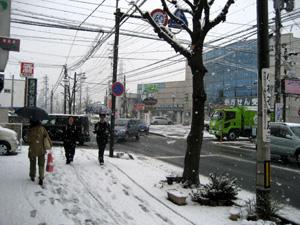 春の雪のなかの通学・出勤