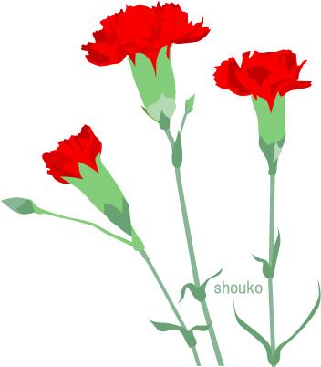 カーネーション 母の日 花のイラスト 無料イラスト フリー素材