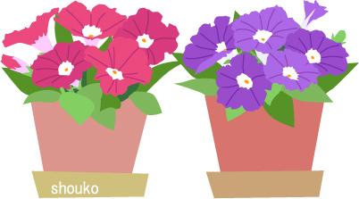 ペチュニア 花のイラスト 夏 無料素材