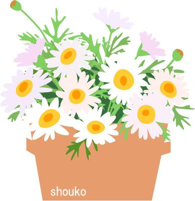 マーガレット 花のイラスト無料素材