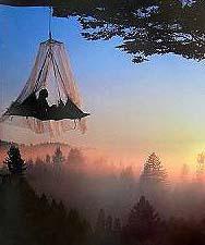 だいたい「隠れ家」って木の上がおおいよなぁ〜