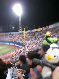 20110907_6.JPG