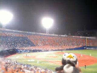 20110907_8.JPG